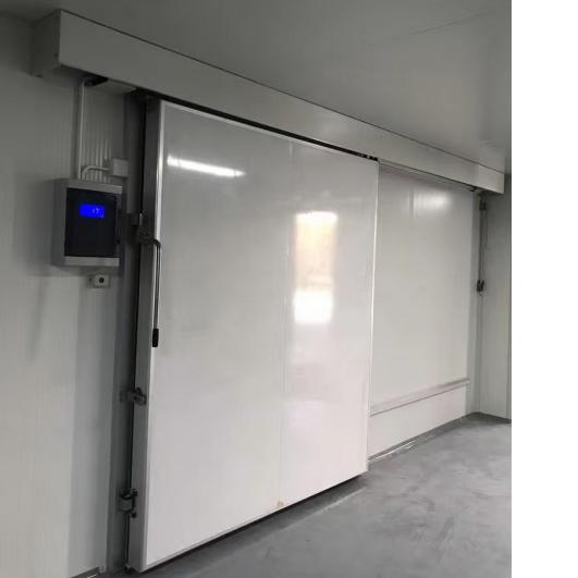 Electrical Sliding Freezer Doors Featured Image